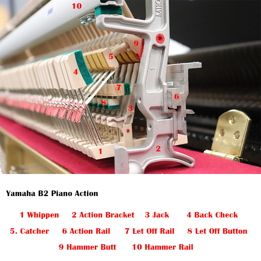 Yamaha B2 Piano Action Model